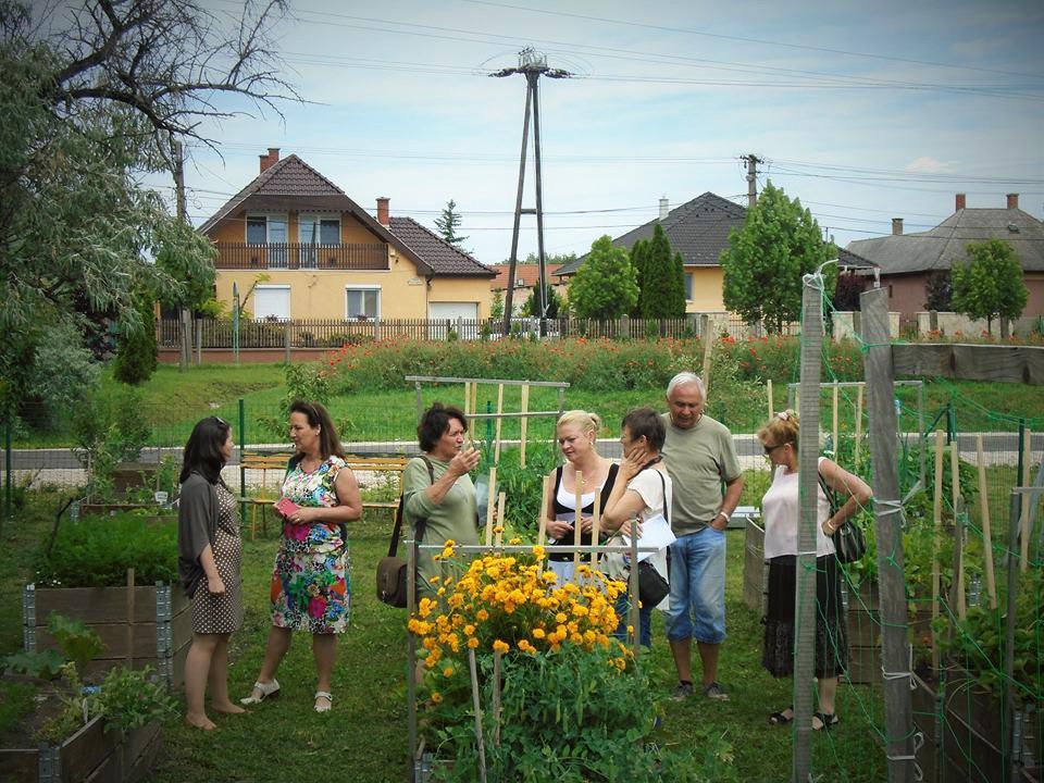 2016-os Virágos Magyarországért mozgalom zsűrije a szárazréti közösségi kertet szemlézi