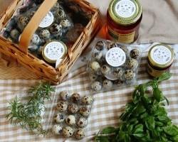 Augusztus végén saját piacnappal nyit az új fehérvári kosárközösség