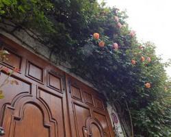 A tíz legtutibb randihelyszín Fehérváron