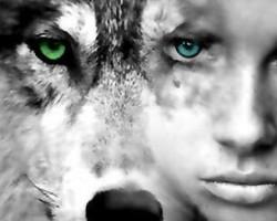 """""""Nem félünk a farkastól"""" - Játékest"""