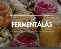 Kezdő Fermentációs Workshop 6/1