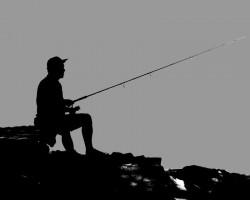 Palotavárosi Felső-tó - MAVER Challenge Method Feeder KUPA