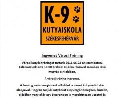 Ingyenes Városi Tréning a K-9 Kutyaiskolával