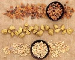 Aranyat, tömjént, mirhát - Fűszerek és gyógynövények a Bibliában