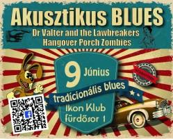 Akusztikus Blues koncert az Ikonban