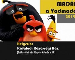 Madár-show
