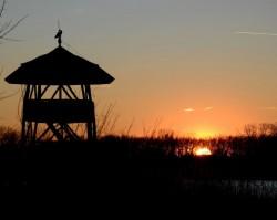Ökotúra a naplementében