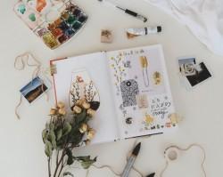 A szétválogatás művészete – Rend a lelke mindennek