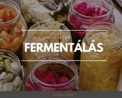 Kezdő Fermentációs Workshop