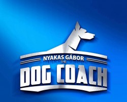 Nyakas gábor - The dog coach az IKON CLUB-ban