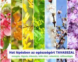 Hat lépésben az egészségért tavasszal mini tanfolyam