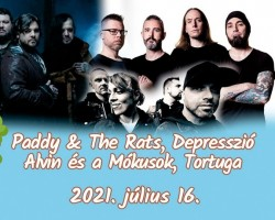 Depresszió, Alvin és a Mókusok, Paddy & The Rats, Tortuga