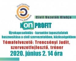 NON PROFIT - Újrakapcsolódás-Civil Vezetők Klubja