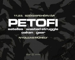 Petofi x Satelles x Wasted Struggle x Oaken x Gear