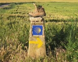 El Camino - beszélgetés Mihály Mariannal az útról, lélekről, önmagunkról
