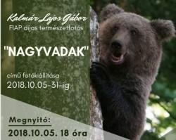 Kalmár Lajos Gábor