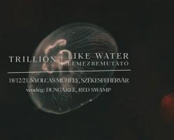 Trillion - Like Water lemezbemutató, vendég: Dungaree, Red Swamp # Nyolcas Műhely