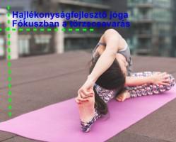 Hajlékonyságfejlesztő jóga - fókuszban a törzscsavarás