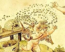 A méhesgazda tudománya. Kis magyar méhészet Dél-Angliában