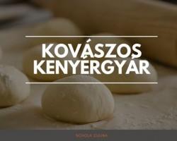 Kovászos kenyérgyár Petrával