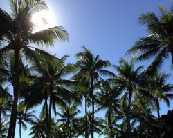 Ori Tahiti tánc kezdőknek