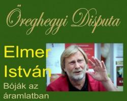 Elmer István: Bóják az áramlatban