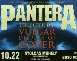 PanterA tribute by Vulgar Display Of Cover