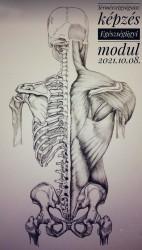 TerTermészetgyógyász képzés - Egészségügyi alapmodul – Székesfehérvár