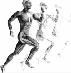 Természetgyógyász képzés - Egészségügyi alapmodul – Székesfehérvár!
