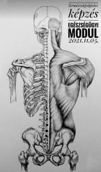 Természetgyógyász képzés - Egészségügyi alapmodul – Székesfehérvár