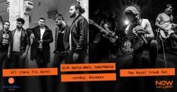 The Royal Freak Out ◆ IFI ◆ Basemen ☛ Nyolcas műhely