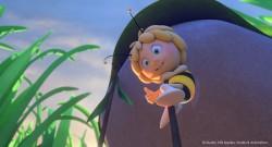 Maja, a méhecske – A mézcsata