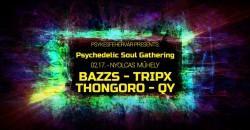 Psychedelic Soul Gathering - psy&GOA