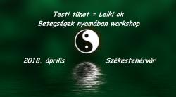 Betegségek nyomában workshop
