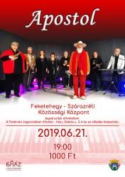 Apostol együttes koncert