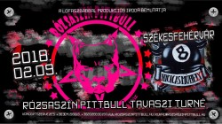 Rózsaszín Pittbull koncert # Nyolcas Műhely
