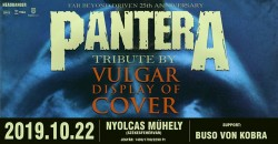 PanterA tribute by Vulgar Display Of Cover